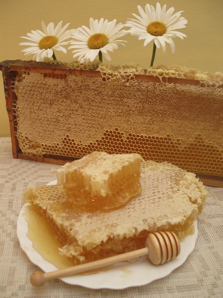 raw honey comb frame